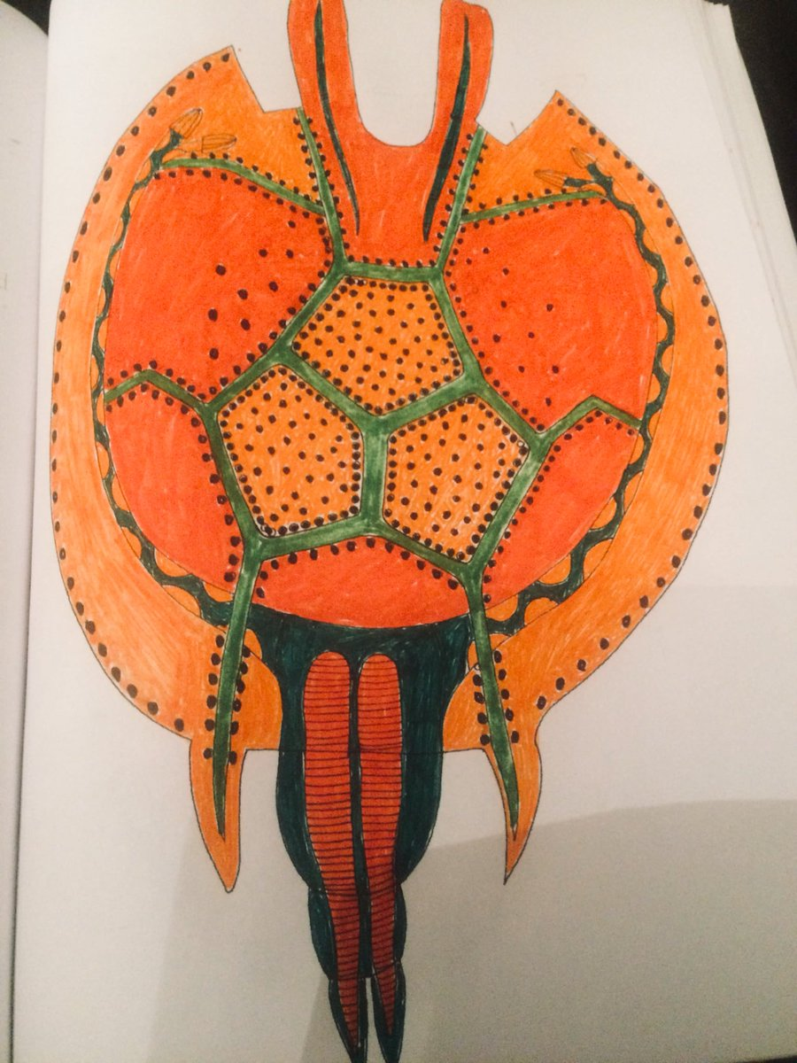 book Paraneoplasien, Tumorsyntropien und