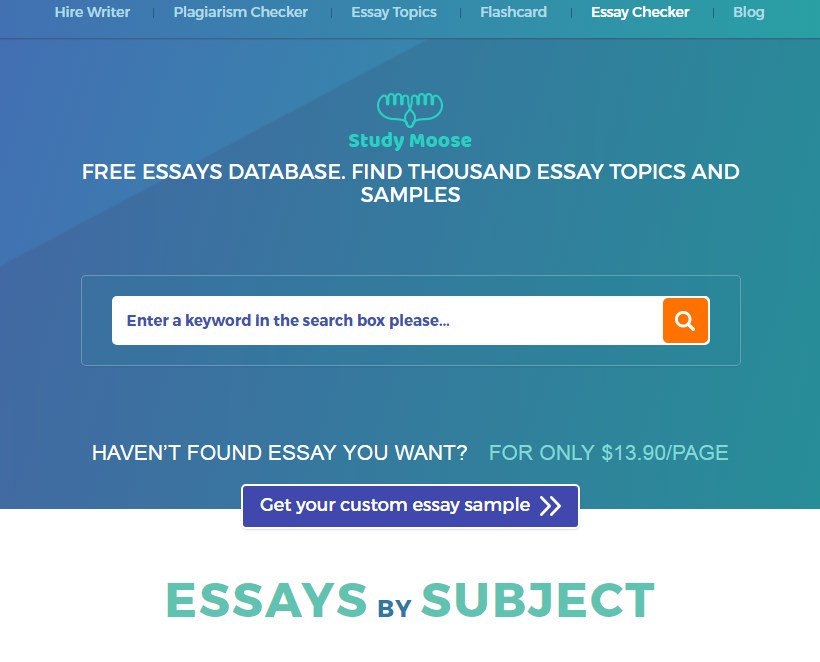 essay writers review