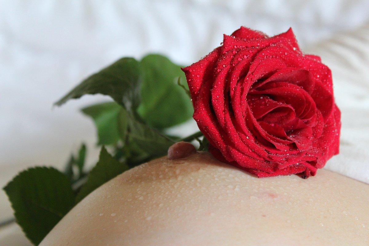 eroticheskaya-fotogalereya-buton-golaya