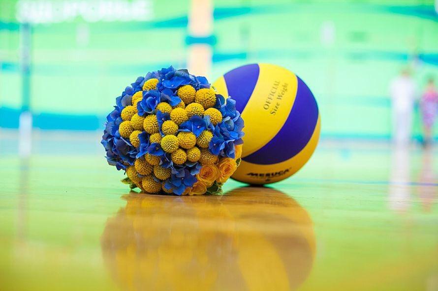 с днем волейбола поздравления как
