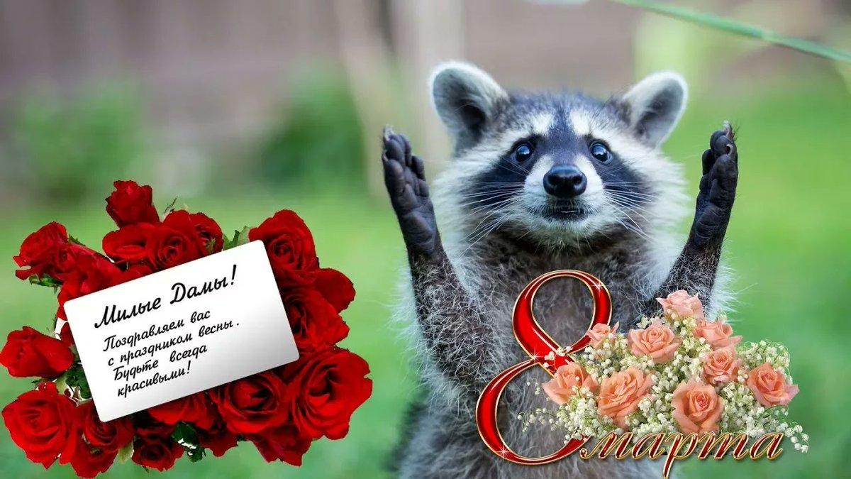 Поздравление девчат с 8 марта прикольные