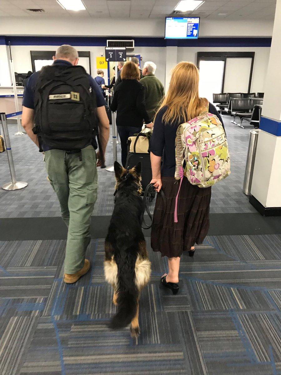 Puppy flies to Europe! https://t.co/tx9z...