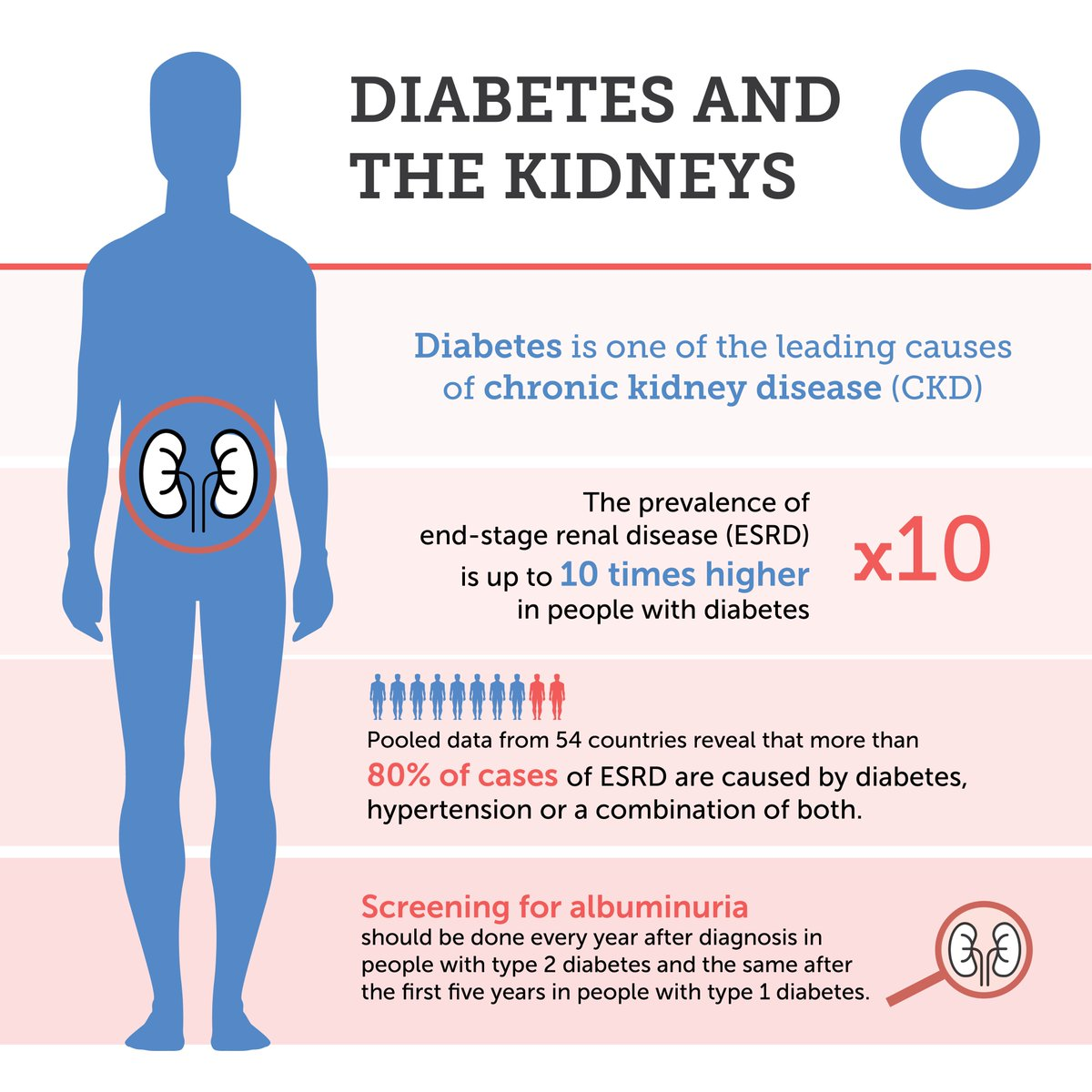 World Diabetes Day On Twitter Diabetes Is One Of The Leading Causes Of Chronic Kidney Disease Ckd Support Worldkidneyday And Learn More About Kidney Disease Prevention At Https T Co Xyuzasxtnp Https T Co Qhsfhswx40