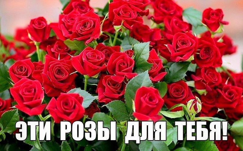 поделиться картинки розы от саши грехах