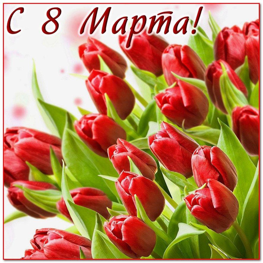 Открытки с 8 марта женщинам фото, открытку днем рождения