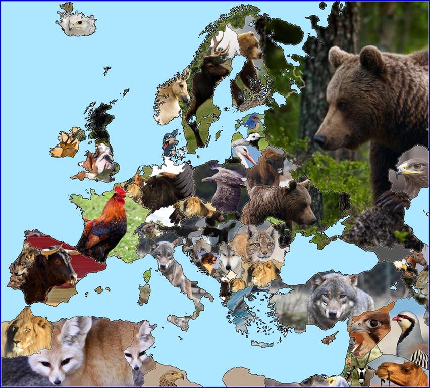 символы страны россии животные