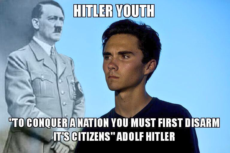 Image result for david hogg wearing nazi