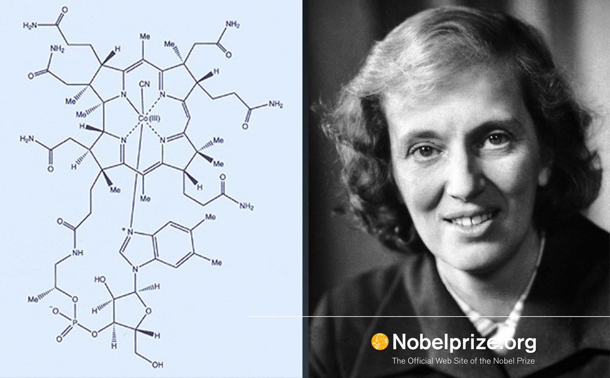 Dorothy Crowfoot Hodgkin was arguably the most outstanding X-ray crystallographer of her time. She determined the structure of vitamin B12 (left image). She is one of only four women awarded the #NobelPrize in Chemistry. #IWD2018