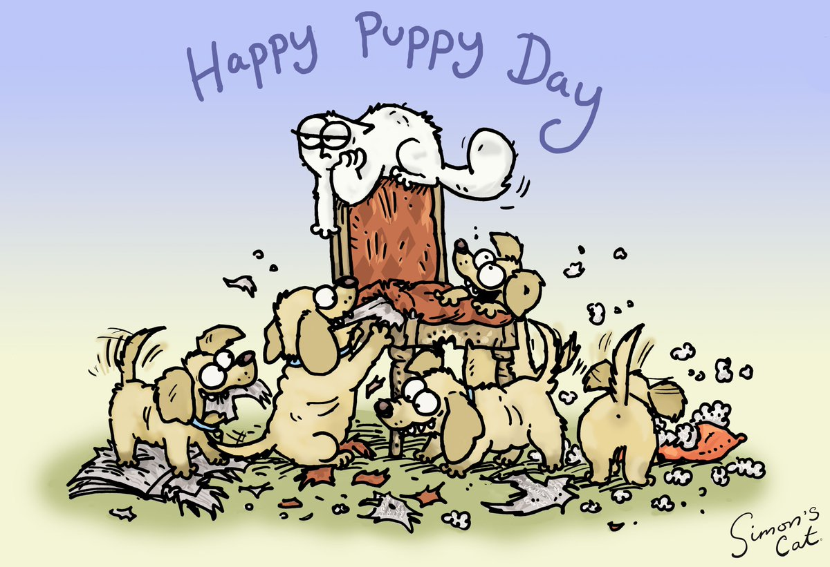 Happy #NationalPuppyDay ❤️ Simon's Cat is thrilled!