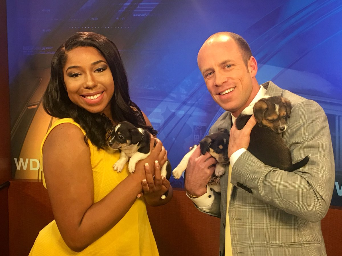 The Southern Pines Animal Shelter brought us some furry friends to celebrate National Puppy Day this morning!  #WDAM7Sunrise #NationalPuppyDay #FridayFeeling