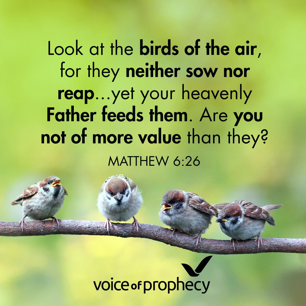 Voice Of Prophecy On Twitter Bible Bibleverse Voiceofprophecy