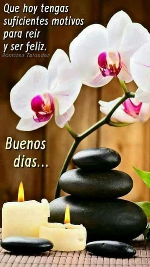 @fermeade Muy buenos dias linda! Besos 😘...