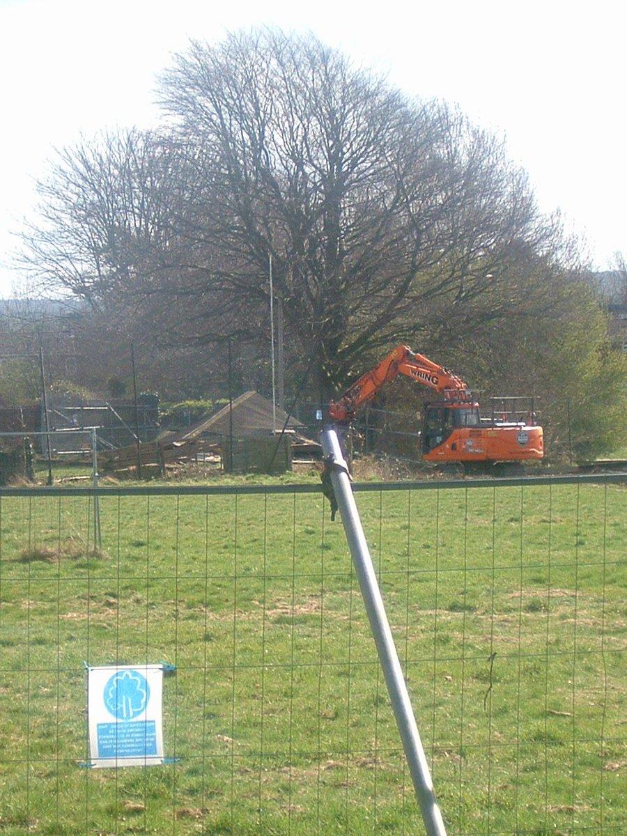 Liz Grant On Twitter Frecheville Memorial Trees Being Cut Down By Wiring X Y W 0 Replies 1 Retweet 2 Likes