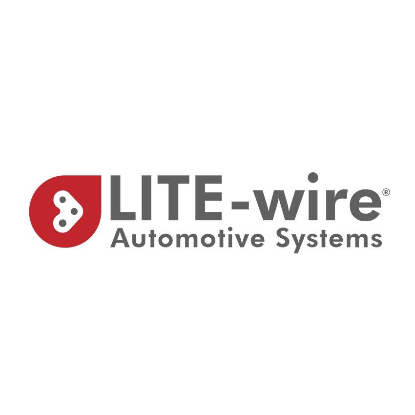 LITE-wire (@LitewireAuto) | Twitter