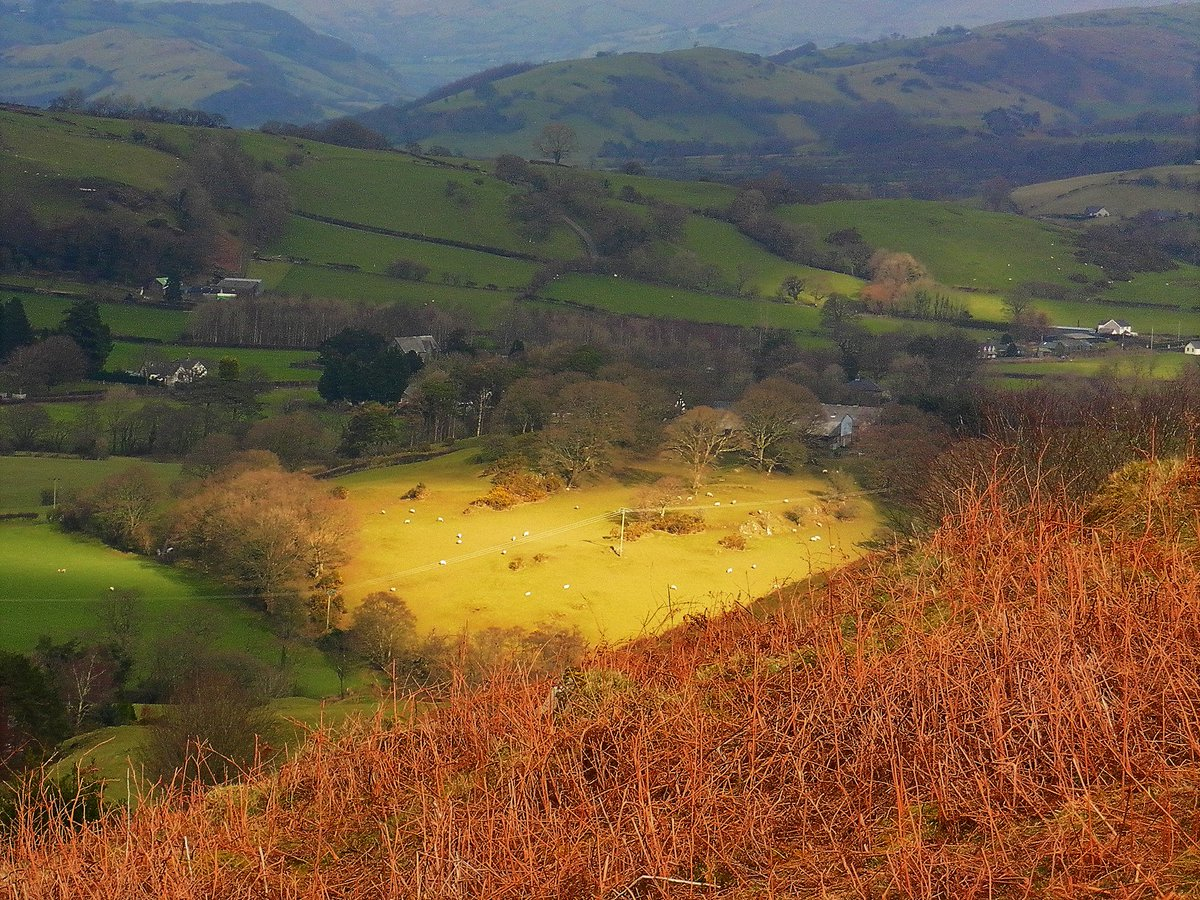 Image result for the bright field rs thomas