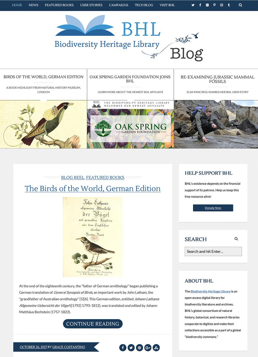 078561cf9a #StayTuned & enjoy this sneak peek at what's in store. Find our blog at  http://blog.biodiversitylibrary.org/ pic.twitter.com/P2MEdO4MmR