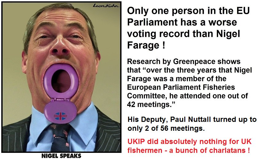 Image result for farage  EU attendance