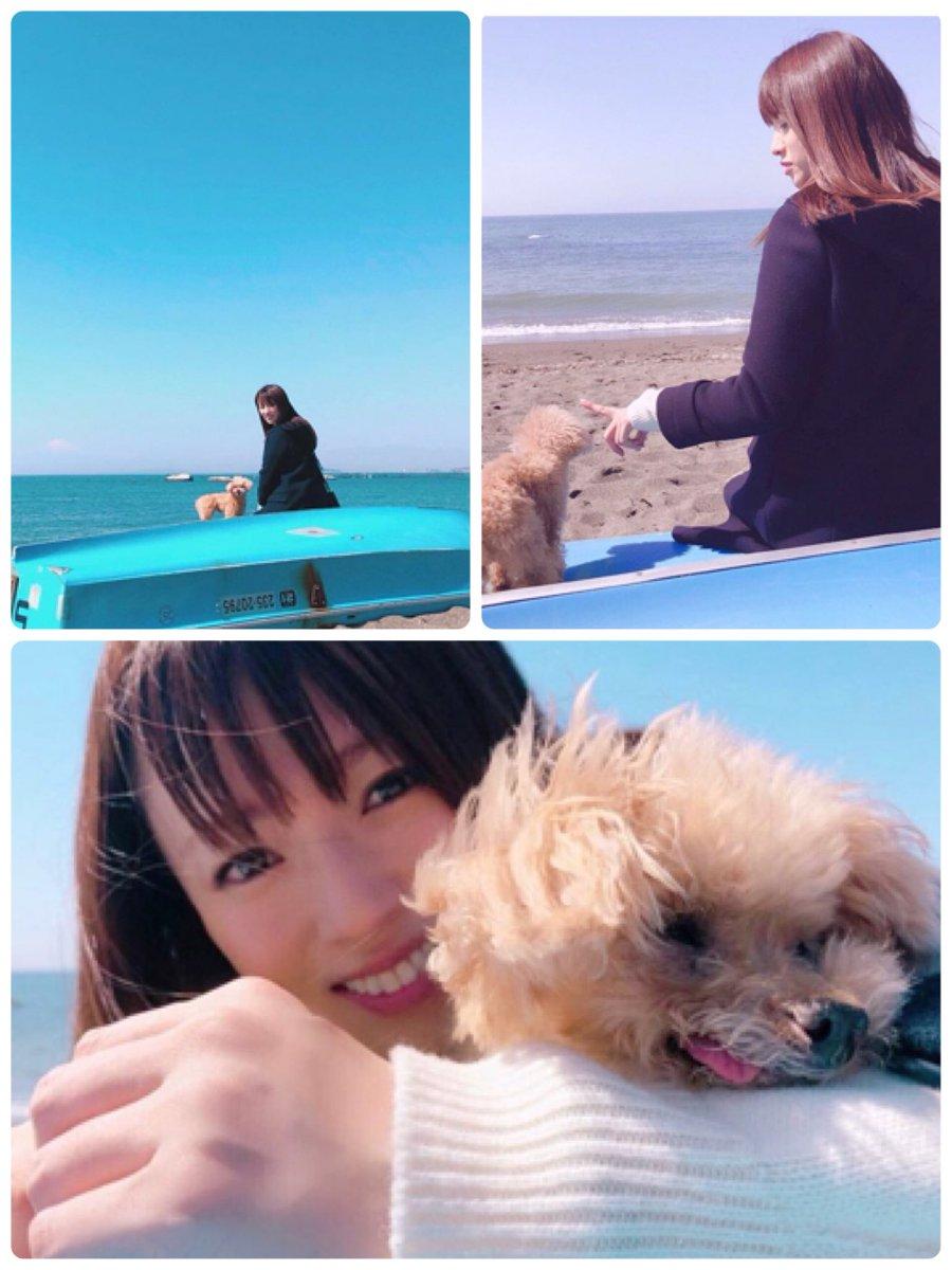 深田恭子instagram хаштаг в Twitter