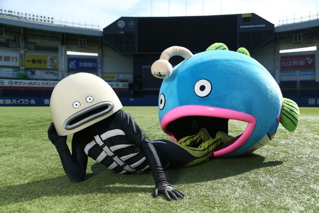 3月26日(月)13時00分よりZOZOマリンのボールパークステージにて「一番まぐろ」ならぬ「一番謎の魚」(初競り)を実施することが決定しました!競りは一般公開しますのでぜひお越しください!https://t.co/JSplxxQAj9 #chibalotte