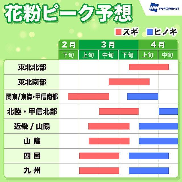 【早く終わって…】花粉のピーク予想 スギは西・東日本では3月中旬まで https://t.co/Isg9hINCGc  またヒノキは、九州や東海、関東では3月下旬~4月上旬、中国や四国、近畿では4月上旬~中旬に飛散量がピークとなる予想です。