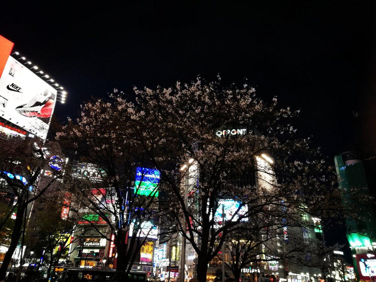 渋谷→四軒茶屋っぽいところにきた
