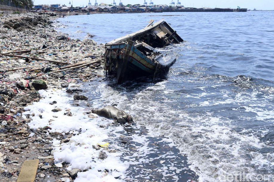 Saking Banyaknya, Sampah di Pesisir Cilincing Tutupi Pantai https://t.co/kgijtY3zX7 #BersihkanTelukJakarta https://t.co/19vkMSFWHq