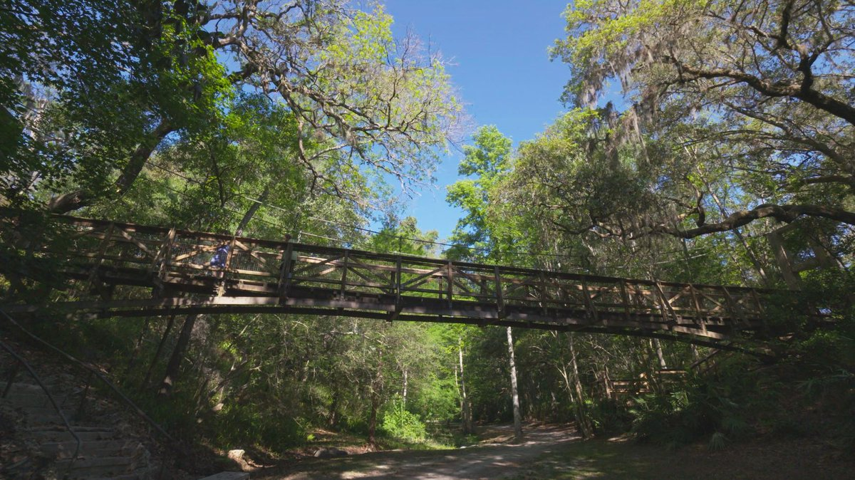 Come see Florida's 'canyons' at Ravine G...