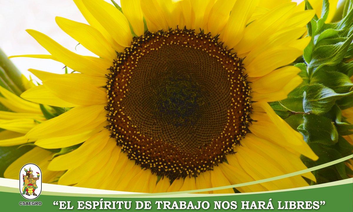 """""""Podrán cortar todas las flores, pero no podrán detener la primavera"""" Pablo Neruda #espírituCSAEGRO #CEP #CET"""