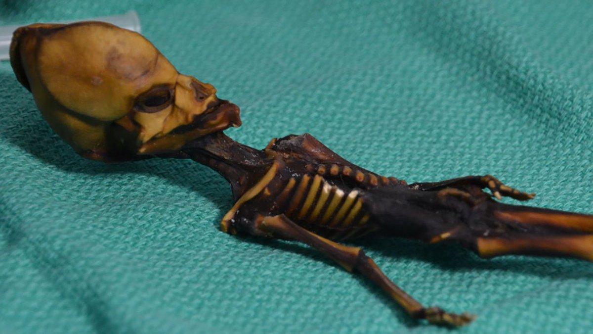 Múmia 'alienígena' encontrada no Atacama é na verdade um ser humano repleto de mutações https://t.co/NqU7kLoH3S