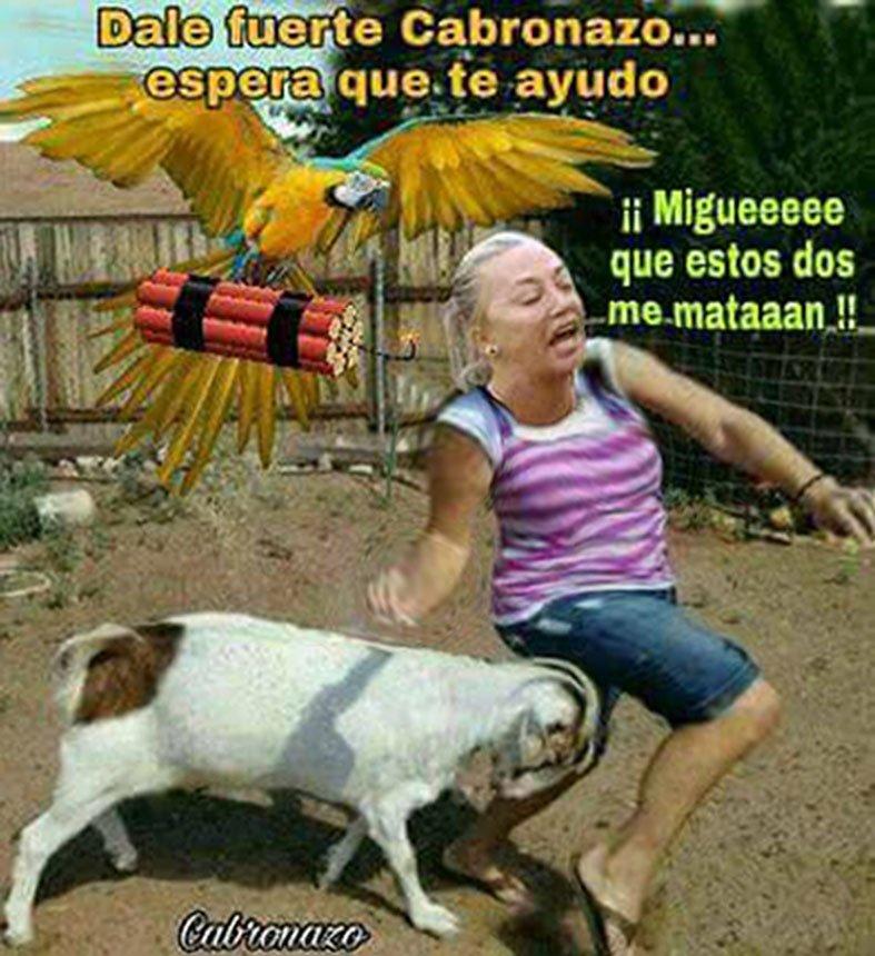 @Josecastelld Mejor ponedles la mejor im...