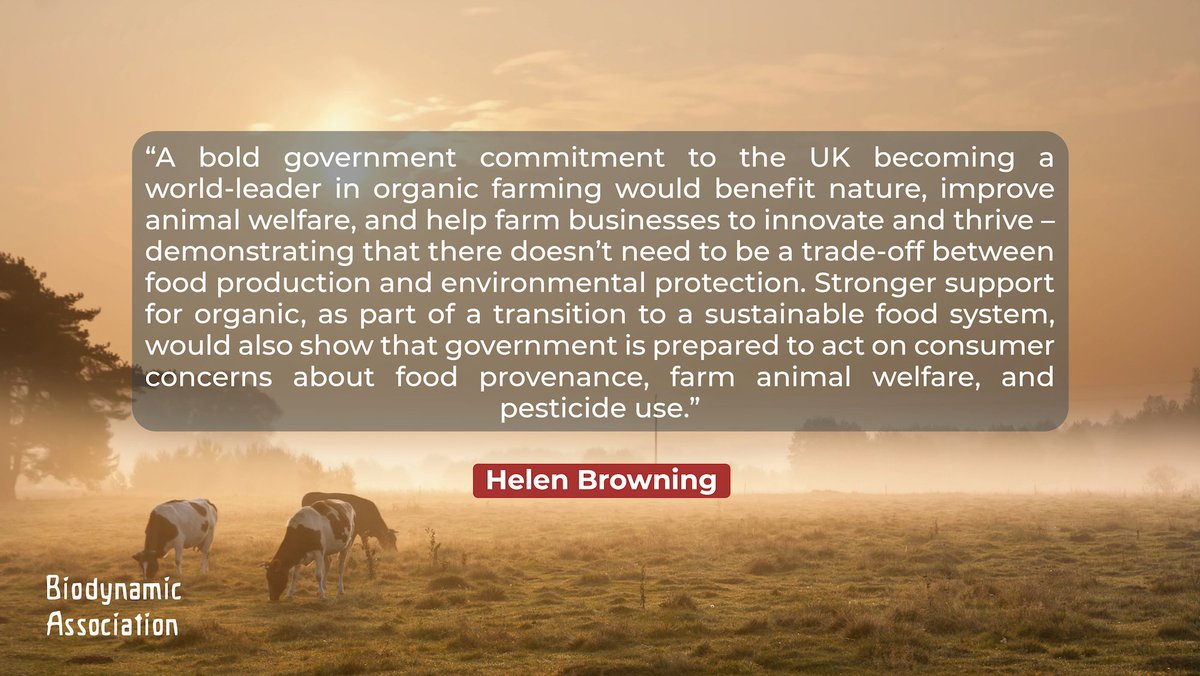 test Twitter Media - Is the UK #organic #farming lagging behind its major competitors? We think so... and so does Helen Browning of the #SoilAssociation https://t.co/Fe0RHU55b3 https://t.co/CoLDXvYuda