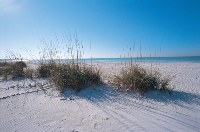 Visit Bradenton Gulf Islands on Twitter: