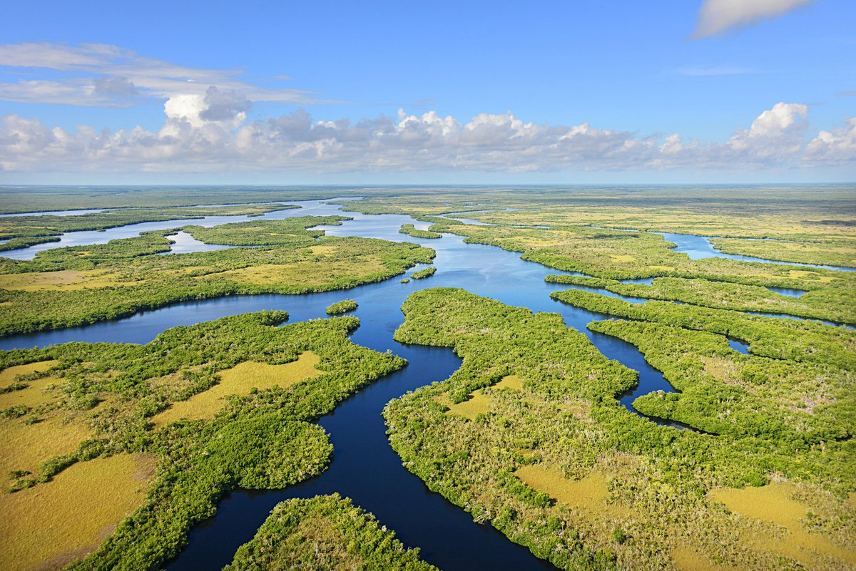 @OneTravel A2: Of course, @EvergladesNPS...