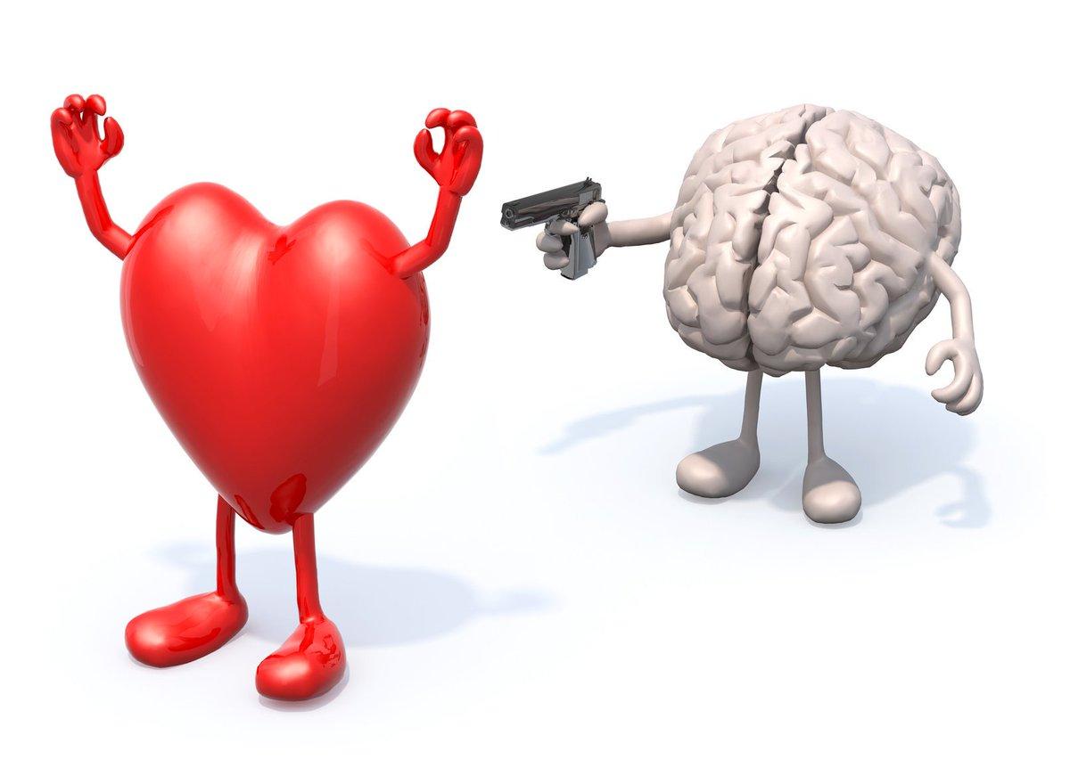 Картинка мозги дерутся а сердца тянутся
