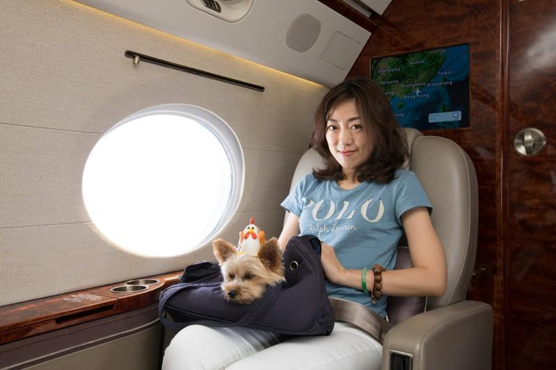 Pampered pooches take to the sky in travel niche https://t.co/1CBn0SSxDX https://t.co/HriczLZF3P