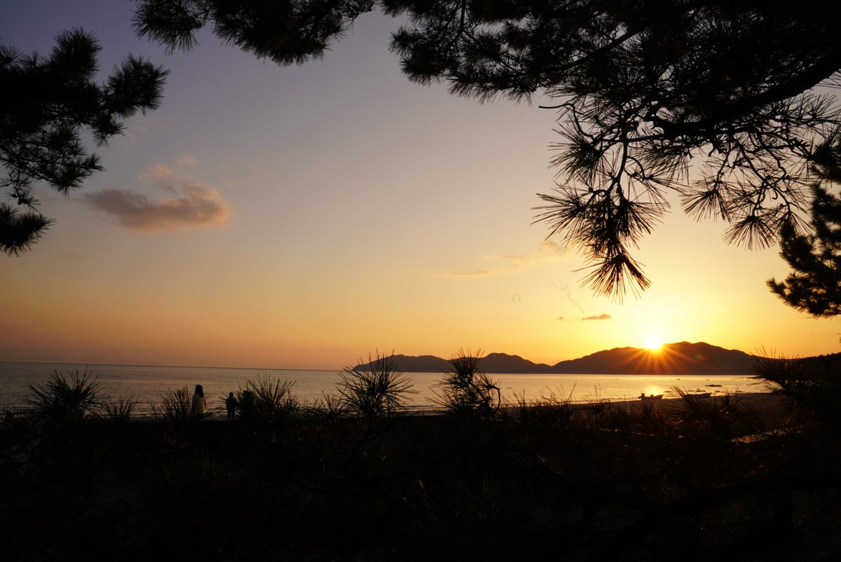 今日は夕焼けが綺麗