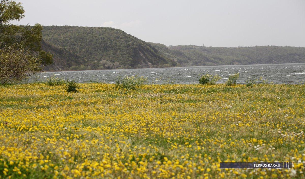 İstanbul'da Barajların Doluluk Oranı; %9...