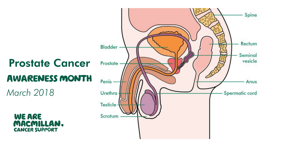 Macmillan Cancer Support On Twitter March Is Prostate Cancer