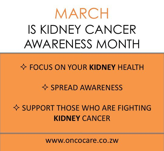 Oncocare Zw On Twitter March Is Kidney Cancer Awareness Month Harare Cancer Kidneycancer Twimbos Zim