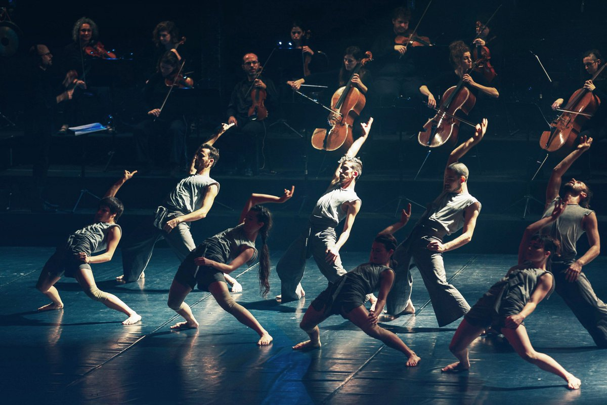 the next dance company concert essay Georgetown university dance company — a prelude to the spring season, this fall 2018 works-in-progress concert features performances by professional and student choreographers, ranging from hip.