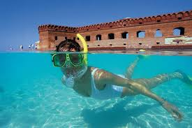 A3: Dry Tortugas National Park! Photo co...
