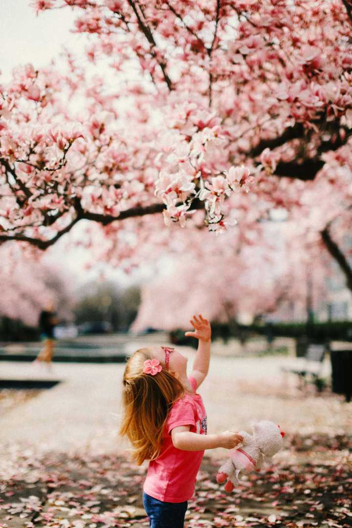Hd Wallpapers On Twitter So Cute Image By Karl Fredrickson Downloadtheapp Https T Co 3aztgzrbgu Pink Baby Girl Little Flowers Cherryblossom Cute Photooftheday Beautiful Wonderful Amazing Awesome Hdwallpapers Wallpapers Download