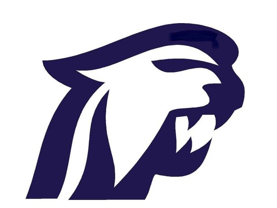 Dakota cougars