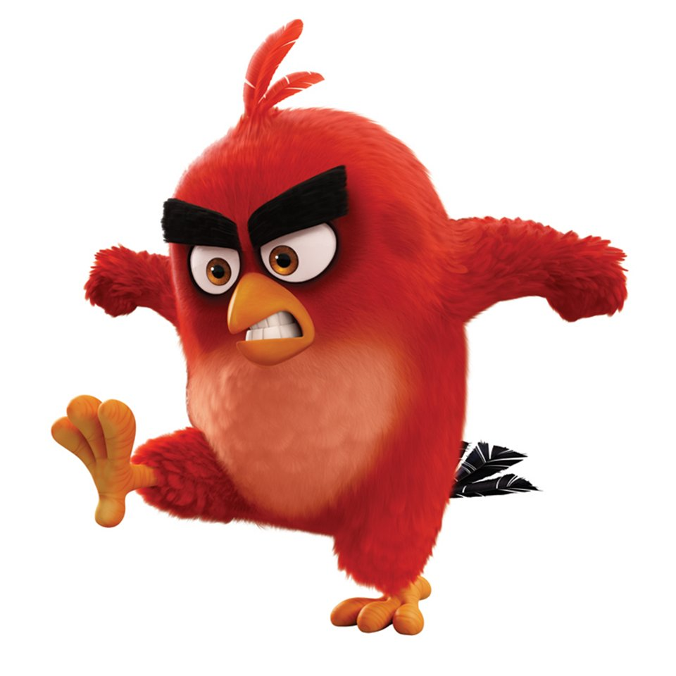 angry birds on twitter which is red is angrier comment below. Black Bedroom Furniture Sets. Home Design Ideas