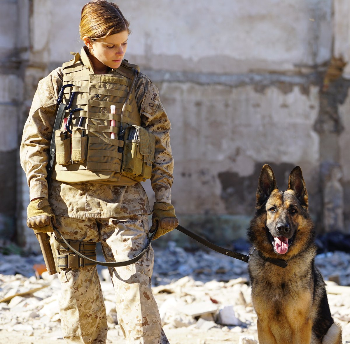 Megan Leavey Movie (@MeganLeavey) | Twitter