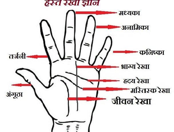 Hast Rekha Gyan Hindi Book