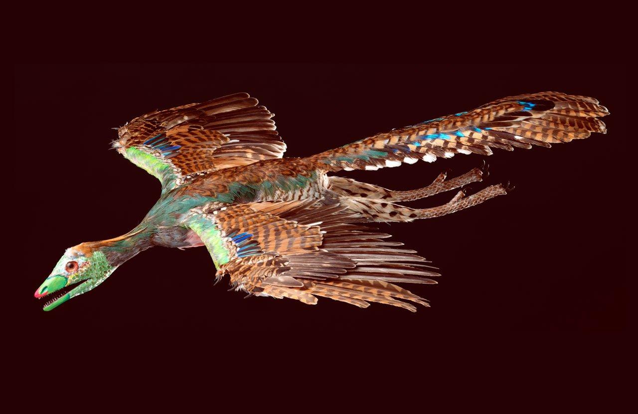 Улетающие птицы рисунки того