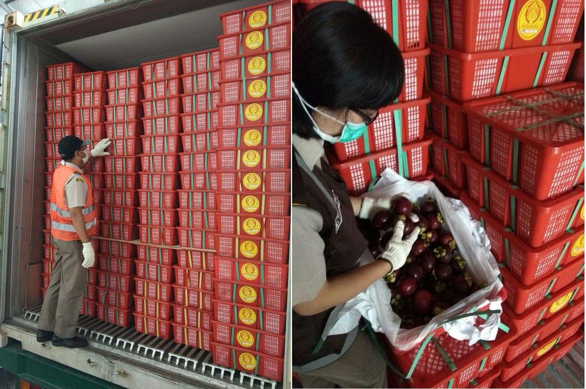 Ekspor Manggis Indonesia ke Vietnam dan Thailand