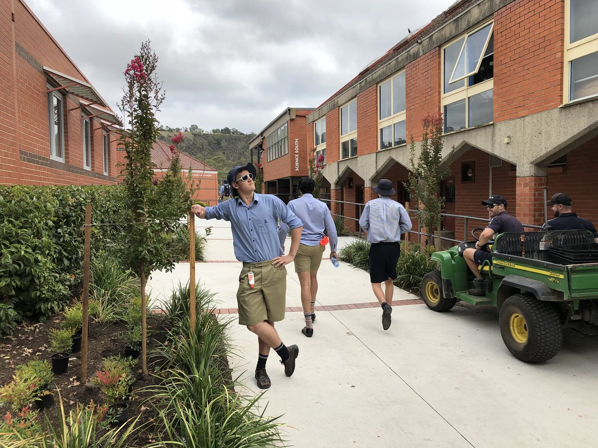 I have a feeling my Twitter stream might have reached the point of parody.... but look what a beautiful job the @CanberraGrammar Maintenance & Grounds team have done transforming Back Drive.