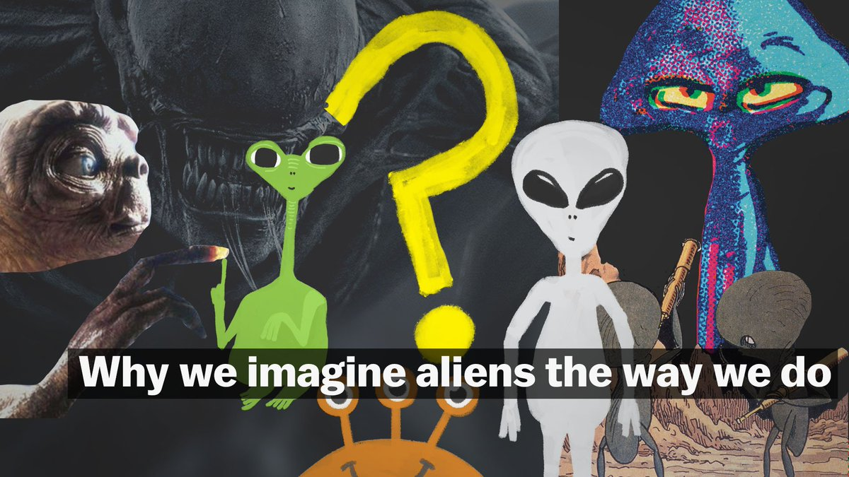 Aliens in films tend to look a lot like humans, having four limbs, big brains, and an upright stance. But there's no scientific reason to assume, if we were to find alien life, that the creatures would look so human-like. https://t.co/adIJKq4TcE